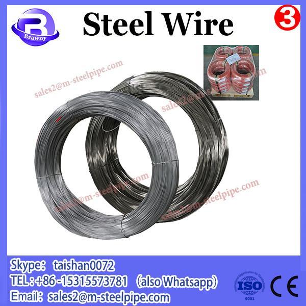 China wholesale Standard AISI,ASTM,BS,DIN,GB,JIS galvan spring steel wire #3 image